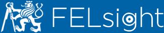 felsight logo